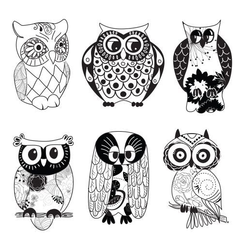 Cute Owl Drawings Black And White Google Search Cute Owl Drawing Owls Drawing Drawings Pinterest