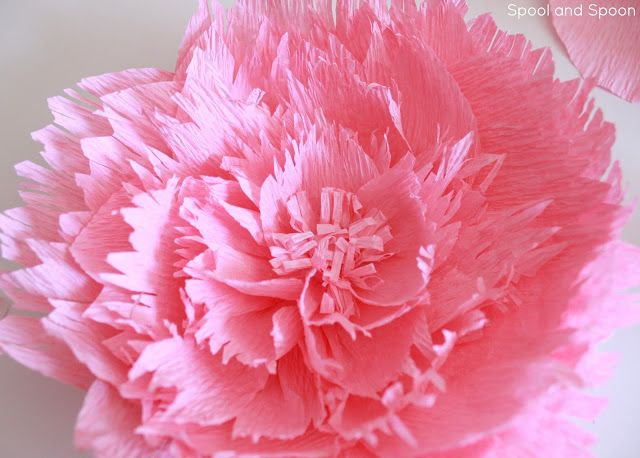 Diy peony and dahlia crepe paper flowers instructions flowers diy peony and dahlia crepe paper flowers instructions mightylinksfo