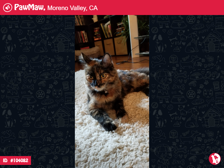 PAWMAW ALERT LOST IN MORENO VALLEY, CA Pet clinic