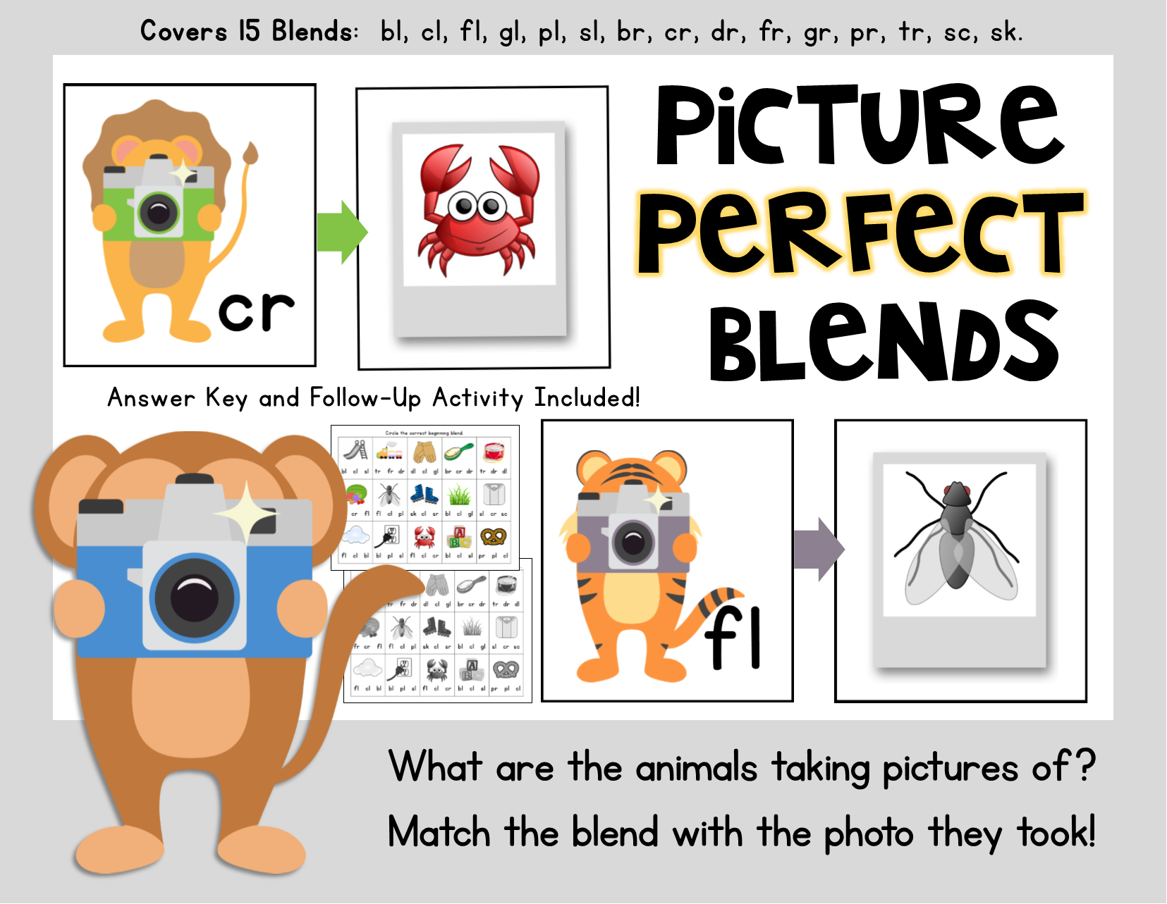 Picture Perfect Blends