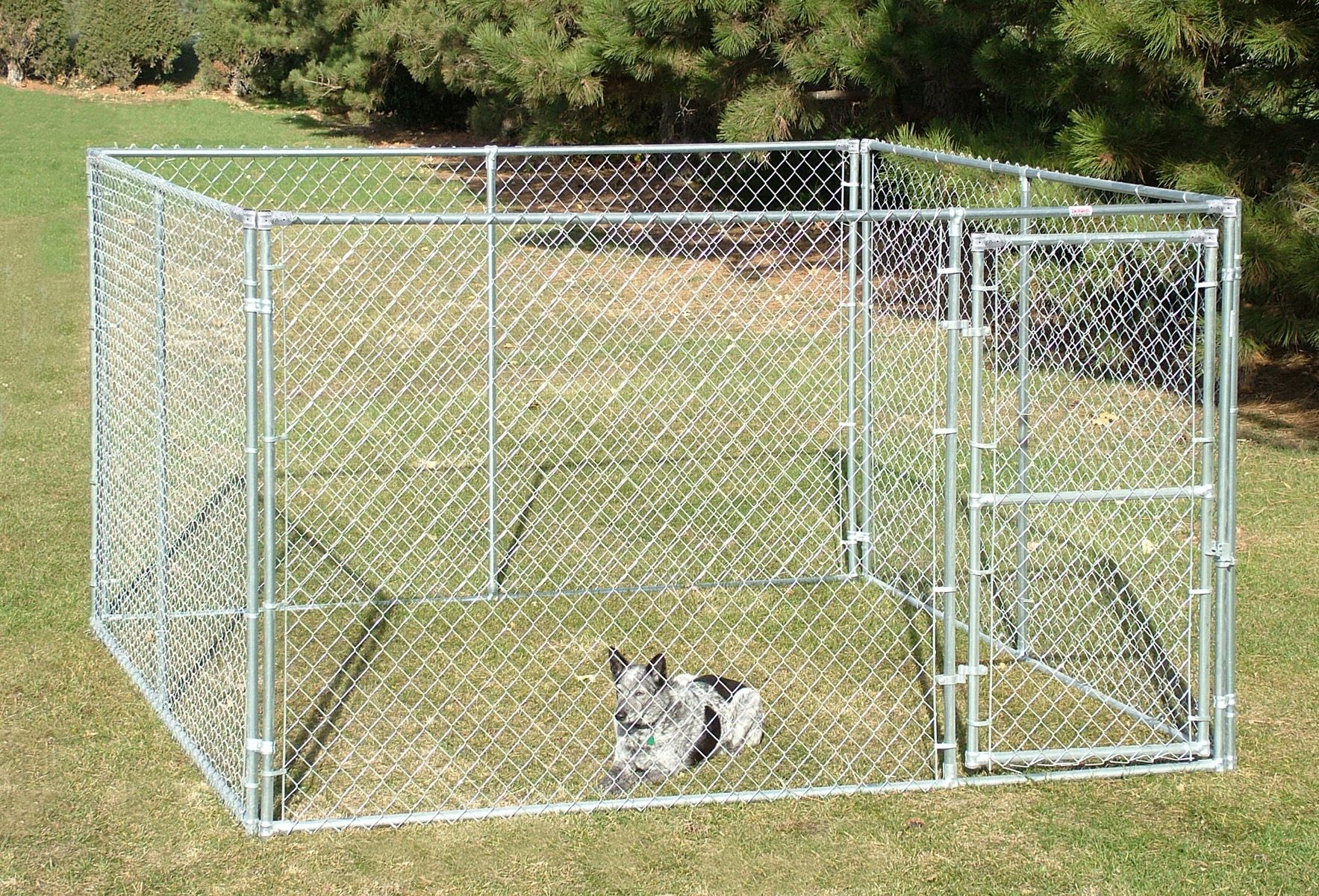 Complete Kennel 10 X 10 X 6 Value Chain Link Kennels Dog Kennel Pet Kennels Dog Runs