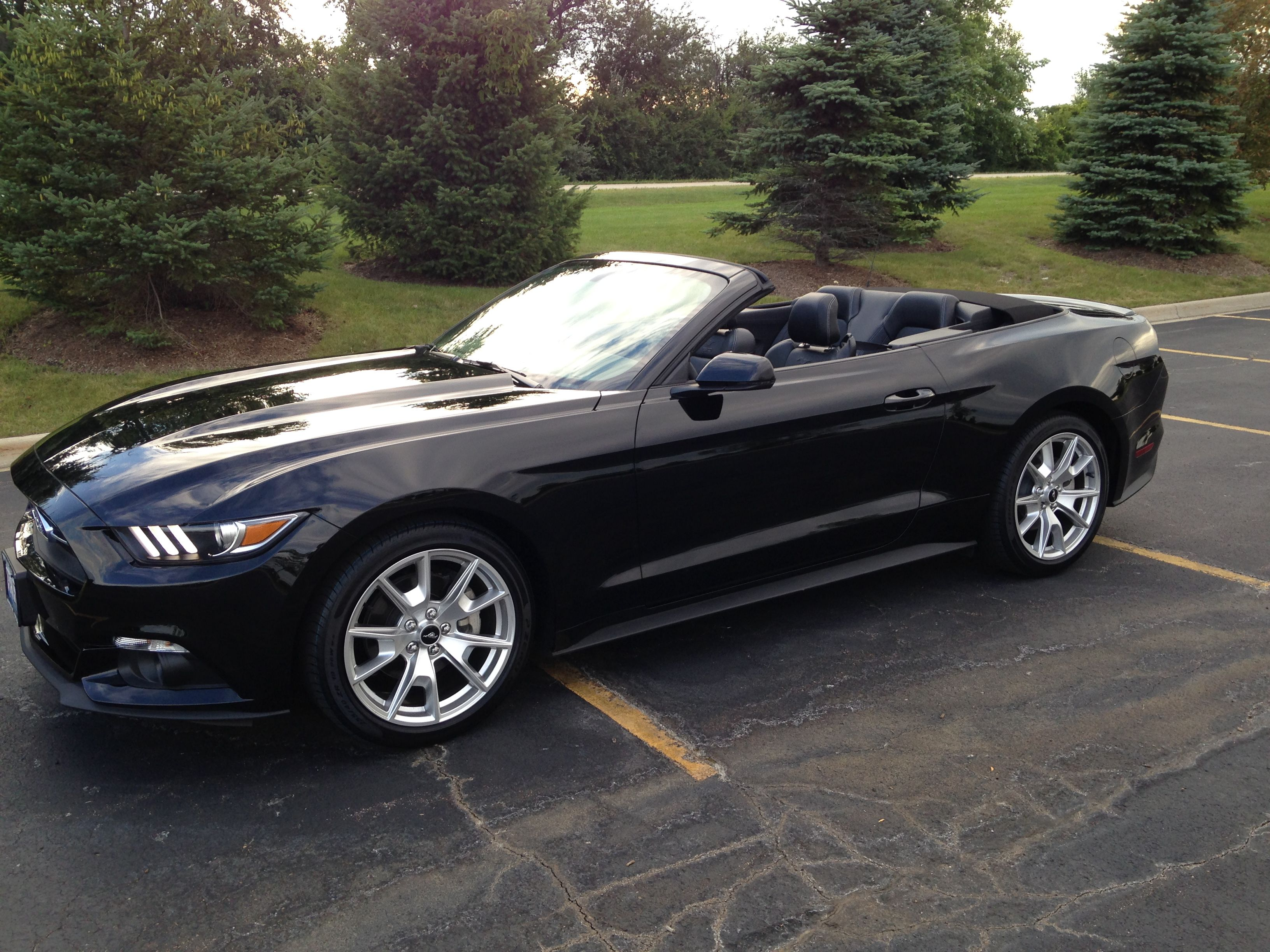 2015 mustang convertible ecoboost premium 50th anniversary edition 6 speed