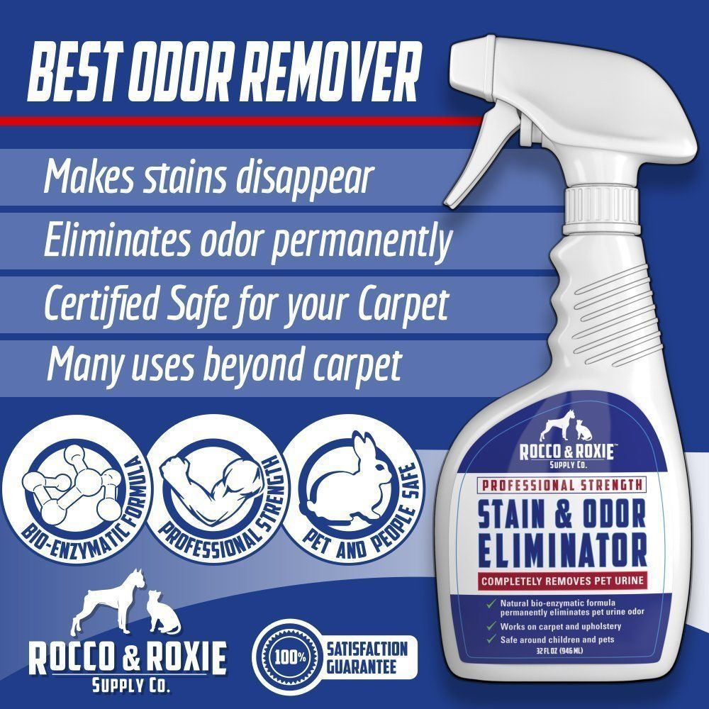 Best Carpet Cleaner For Pet Urine Odor Www Allaboutyouth Net