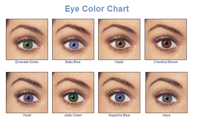This shows all the basic eye colors Hazel, Brown, Blue