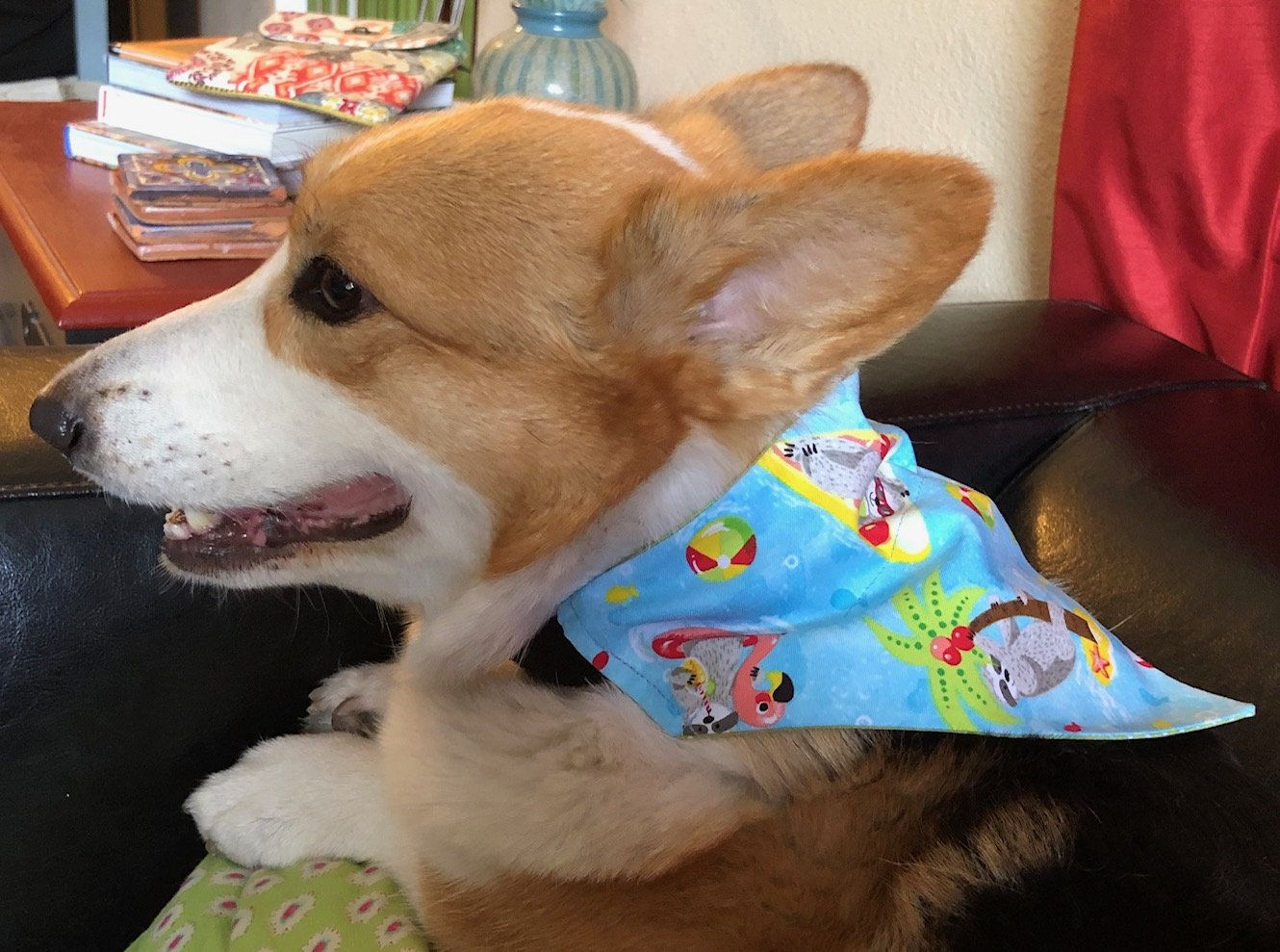 Dog Over The Collar Bandanas With Sloths At The Beach Print Beach Print Your Pet Dogs