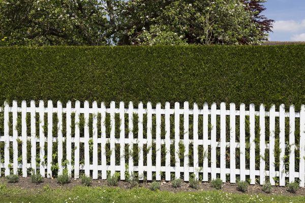 Garden boundary ideas google search garden rooms pinterest garden boundary ideas google search workwithnaturefo