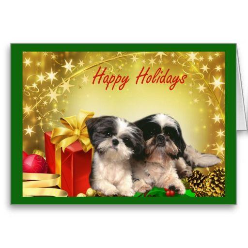 Shih Tzu dog Christmas Cards - Greeting Cards