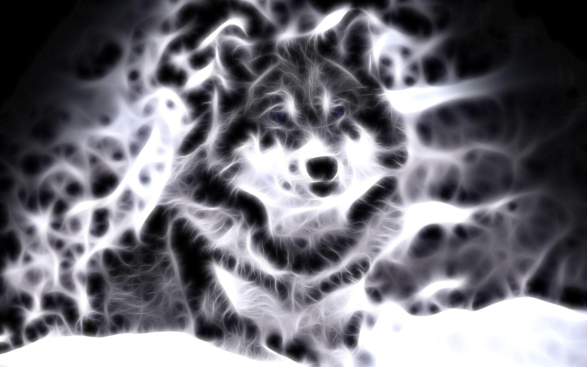 Afbeeldingsresultaat Voor Cool Animal Animal Wallpaper Black Wolf Wallpaper Geometric Animals