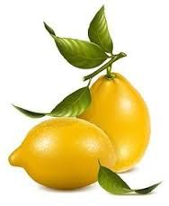 Resultado De Imagen Para Mandala Con Limones Granadas Frutillas Y Uvas Para Colorear Laminas De Frutas Pintura De Fruta Pintar Frutas