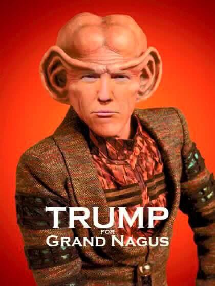 Refer To My Earlier Pin About The Ferengi Rules Of Acquisition