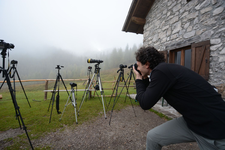Workshop fotografico Pixcube Nikon for Parks, Parco Natuale delle Dolomiti Friulane
