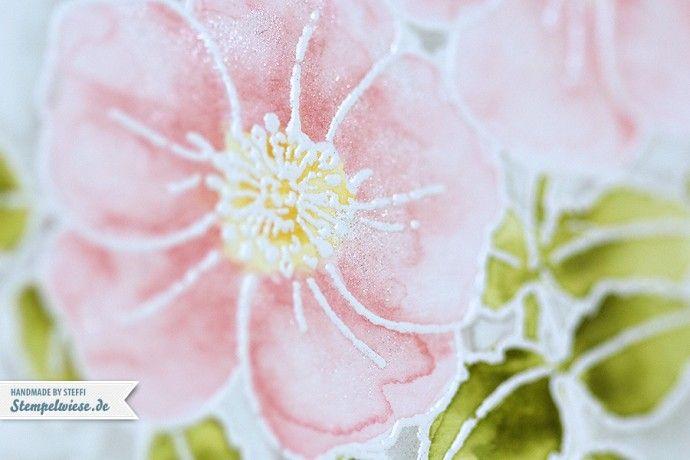 Dieser Stempel Sweetbriar Rose ist perfekt zum Colorieren. Und da ich es liebe mit unseren Stampin' Up! Markern und Wasser zu zeichnen, habe ich mich gestern mal wieder daran versucht. Am einfachsten ist es das Motiv mit Pulver zu embossen. So läuft man nicht Gefahr dass die Farbe ausläuft wenn sie mit Wasser in Berührung...