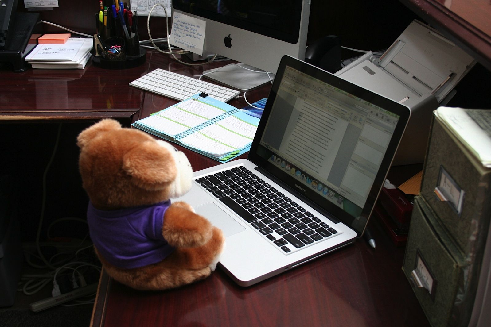 Rocky writing his Poe paper.
