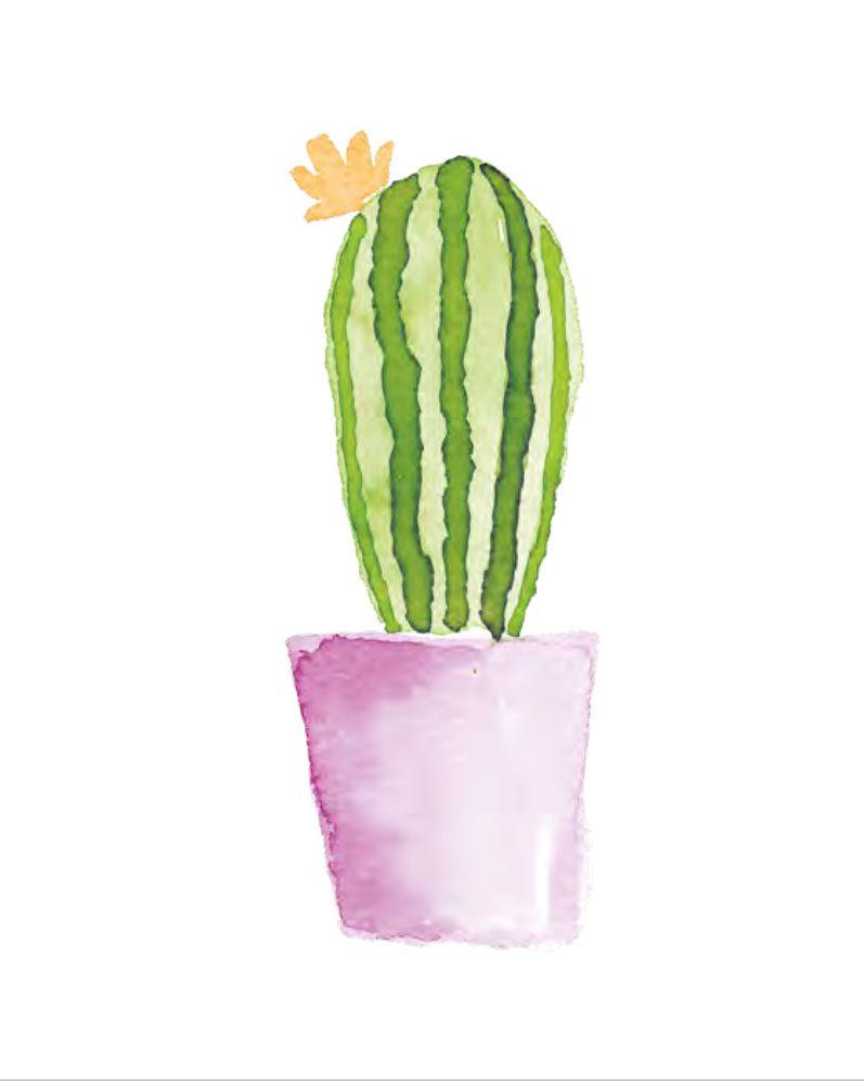 Aquarelles En 5 Etapes En 2020 Dessin Cactus Aquarelle Facile