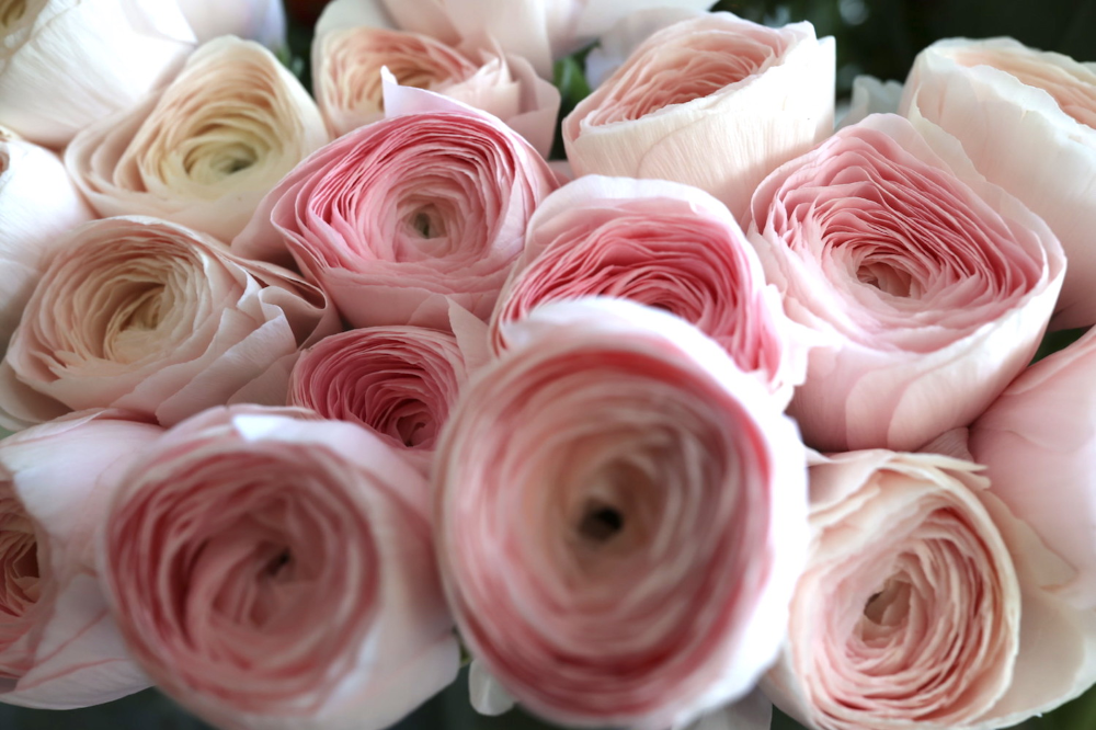 Blumen Sind In Dieser Zeit Ganz Besonders Wichtig Interview Mit Star Florist Victor Breuer Lieblingsstil Interieur Blumen Flo Florist Blumen Blumenladen