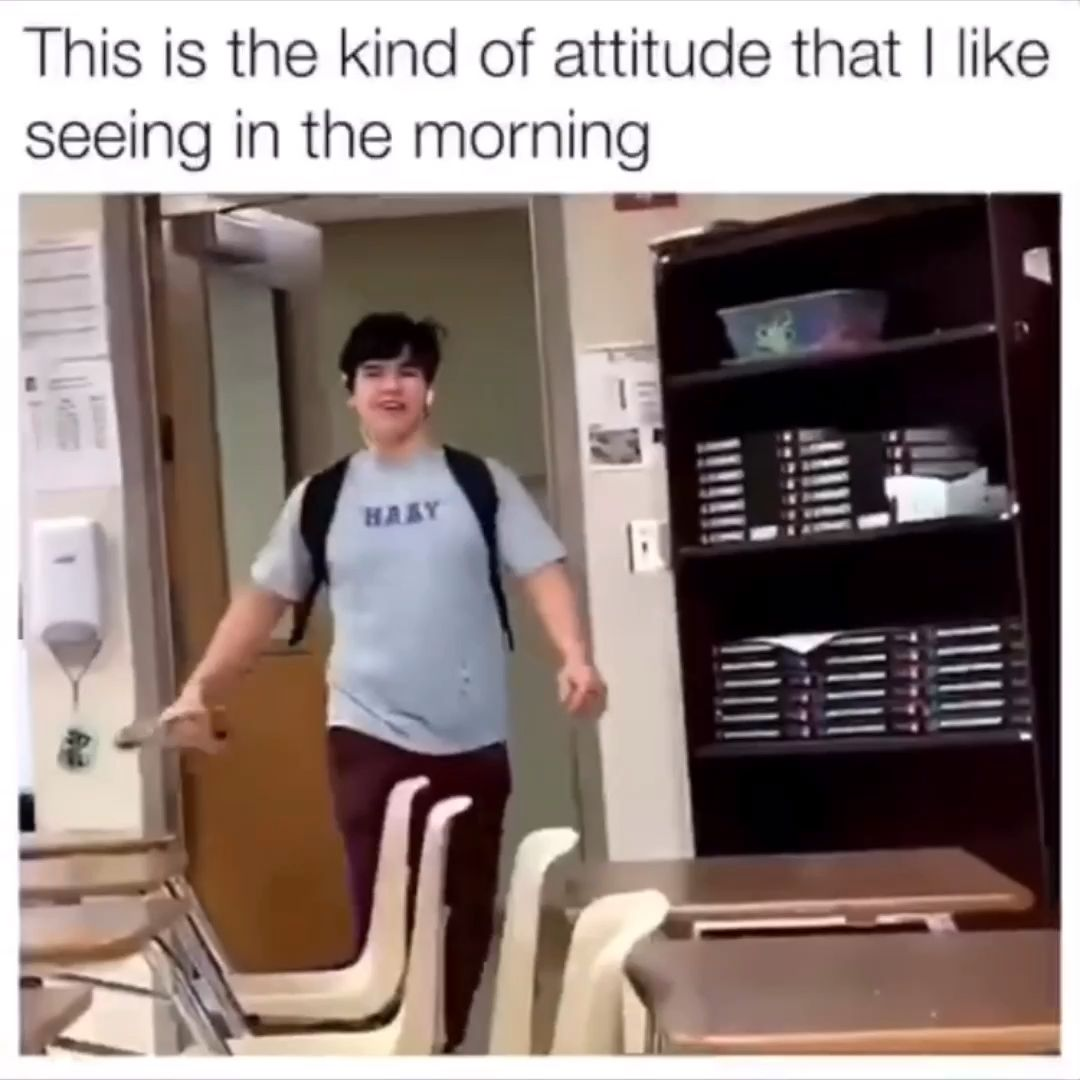 Good Morning Y All Video Stupid Funny Humor Funny Video Memes