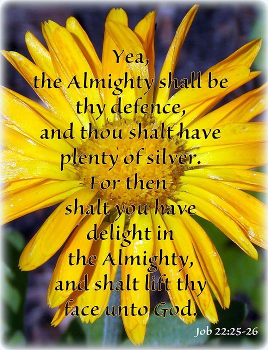 They Defence Canvas Print / Canvas Art by Sheri McLeroy | Faith ...
