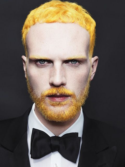 Yellow hair. (not a fan of beards but had to pin it.)