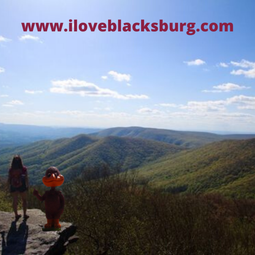 Beautiful Mountains Southwest VA in 2020 Blacksburg