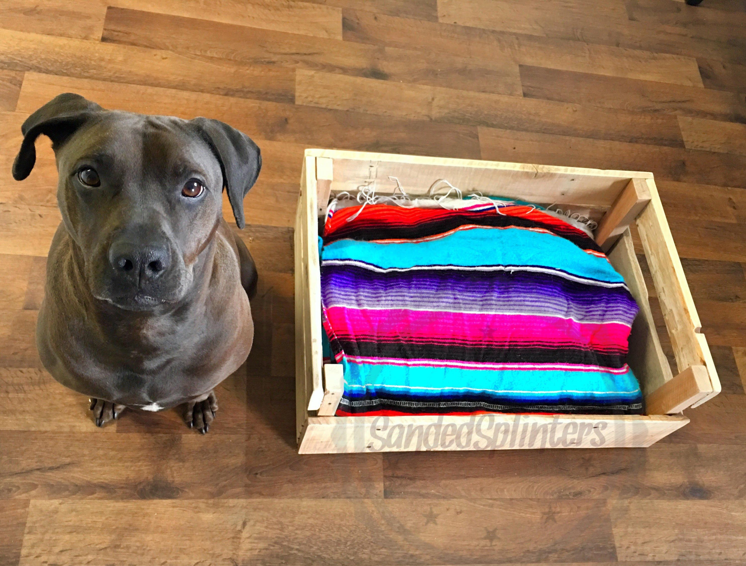 10 DIY Recycled Wood Pallet Dog Bed New Designs   Pallet ...
