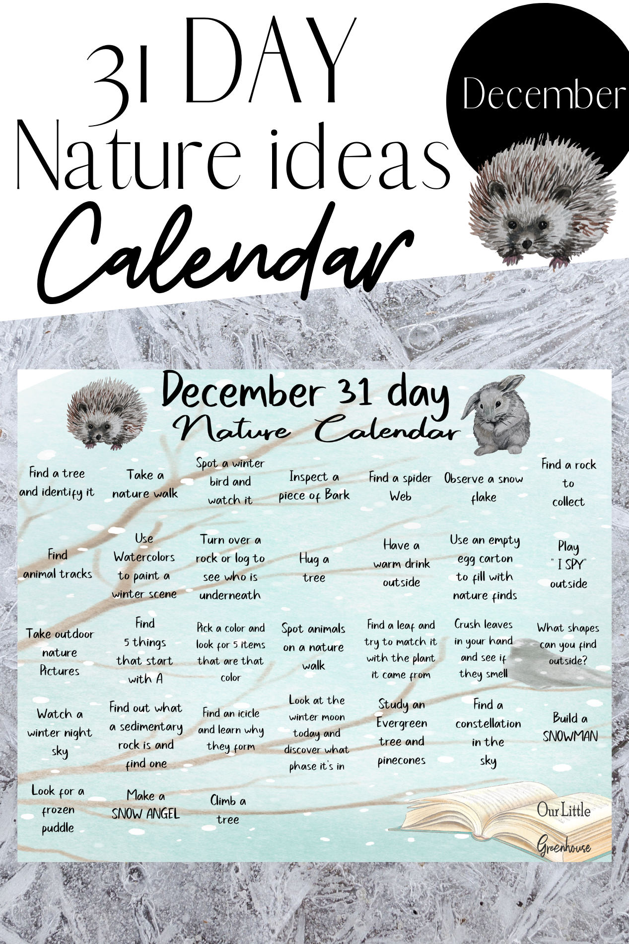 31 Days Of Nature Study For December With Images