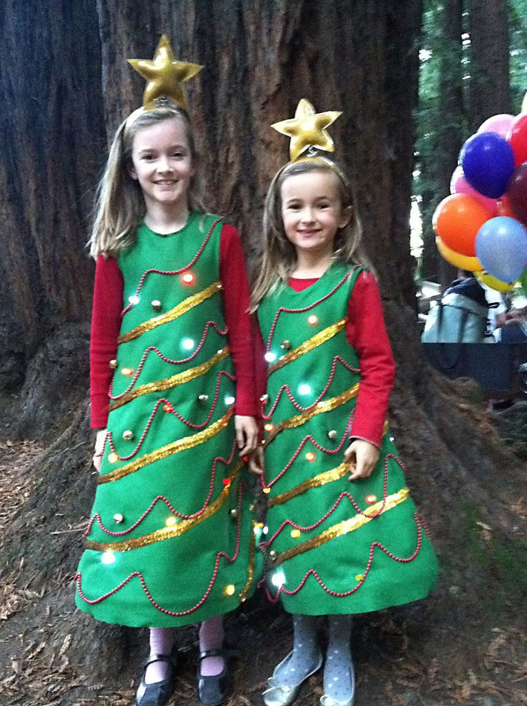 Light Up Christmas Tree Costume Christmas Tree Costume Tree Costume Christmas Tree Costume Diy