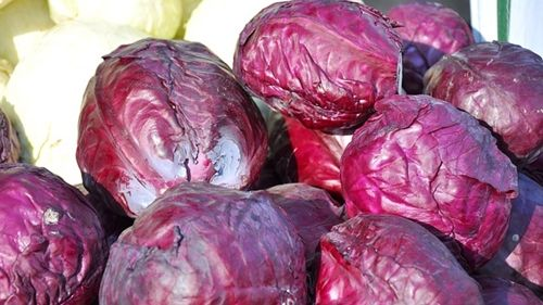 The Benefits of Purple Cabbage, Colorful Slaw with Citrus Dressing