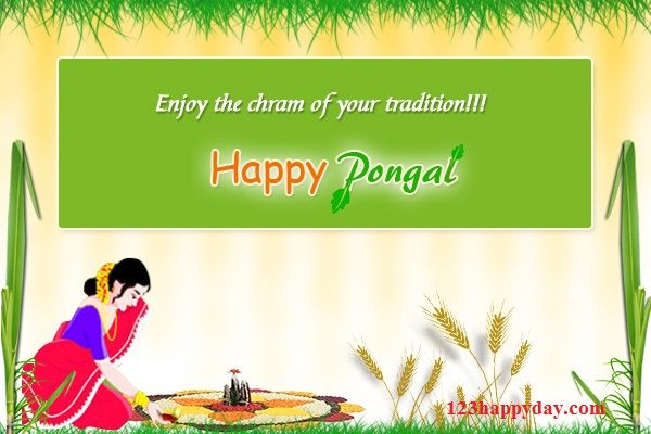 Pongal greetings images free download pongal images pinterest pongal greetings images free download pongal images greetings images happy birthday happy anniversary m4hsunfo