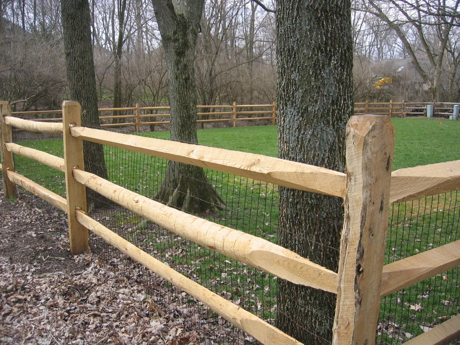 Locust Split Rail Fence With Wire Mesh