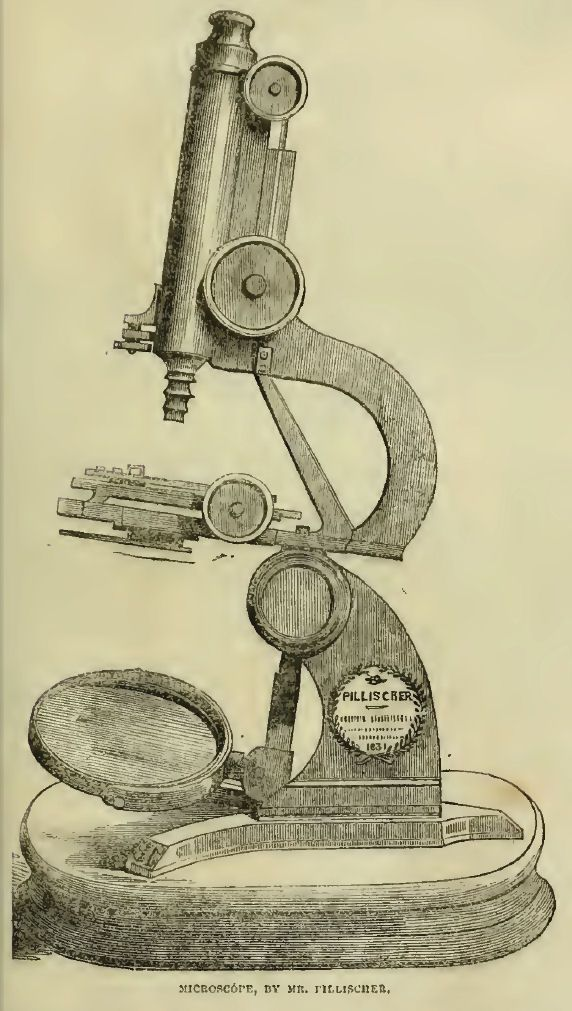 Pillischrer's Microscope, on display at the Great Exhibition of 1851