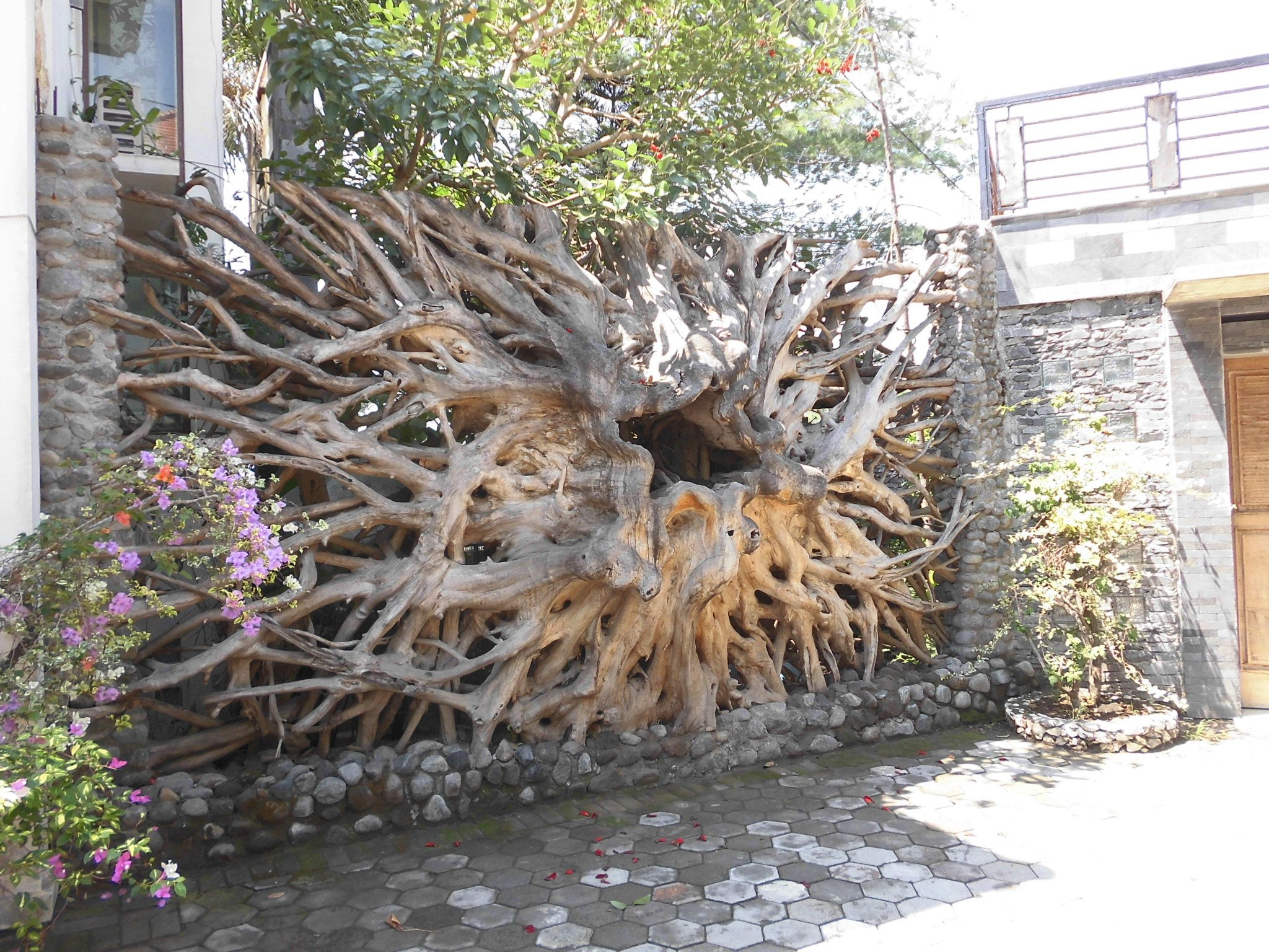 Teak Root Wall Tree Wall Decor Wooden Sculpture Bamboo House
