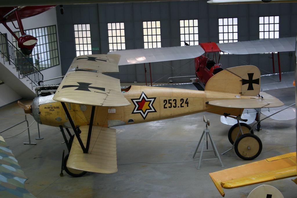 Albatros D III