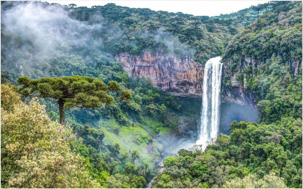 Waterfalls Wallpapers 1080p: The Rainforest Waterfall 4K Wallpaper