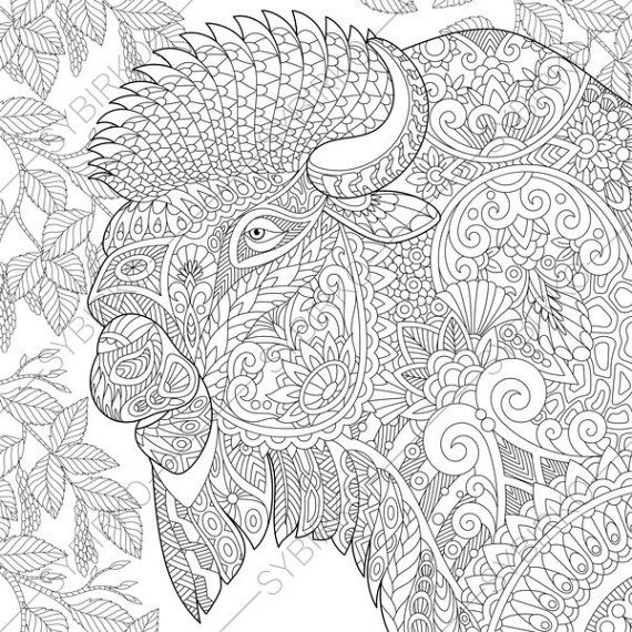 Coloring pages for adults. Bison Buffalo Bull. Adult