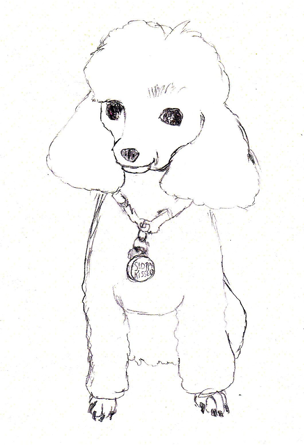 caricature artist sketching poodle - Google Search | Poodles ...