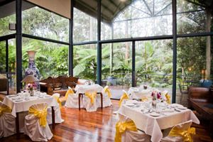 Rainforest Views At Receptions Pethers Rainforestweddings Tamborinecelebrant Tamborine MountainWedding