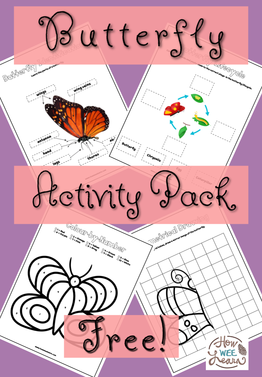 Printable Butterfly Worksheets
