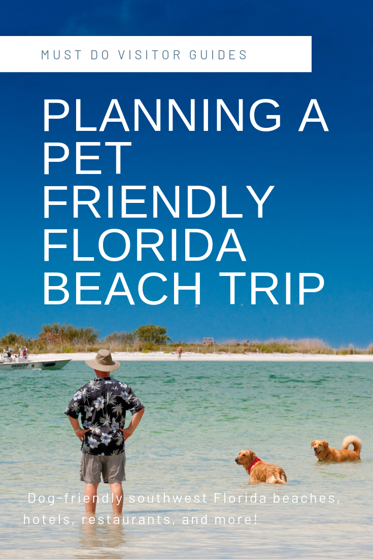 Taking A Pet Friendly Vacation To Florida Must Do Visitor Guides Pet Friendly Vacations Dog Friendly Beach Dog Friendly Vacation
