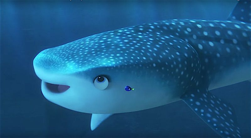 New Finding Dory trailer reveals much more of the sequel movie ...