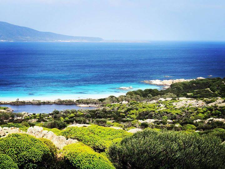 by http://ift.tt/1OJSkeg - Sardegna turismo by italylandscape.com #traveloffers #holiday   #asinara #vivoinsardegna #likes_sardegna #vivoisole #vivereacolori #vivoinsardegna #iger #igersassari #igersardegna #instagram #insardegna #volgo #volgosassari #volgoitalia #sardegna Foto presente anche su http://ift.tt/1tOf9XD   March 26 2016 at 02:26PM (ph deldro )   #traveloffers #holiday   INSERISCI ANCHE TU offerte di turismo in Sardegna http://ift.tt/23nmf3B -