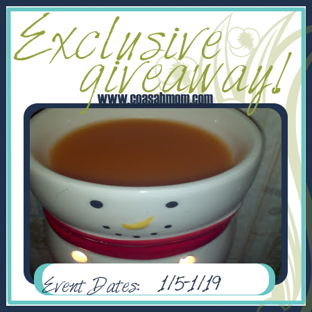 Rude Mom: Candle Warmers Giveaway!! Ends 1/19