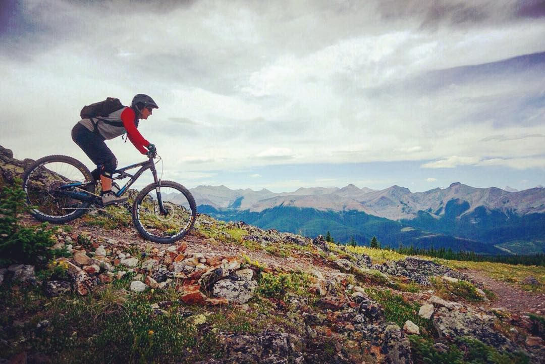 The 5 Best Mountain Bike Trails In Alberta Mountain Bike Trails
