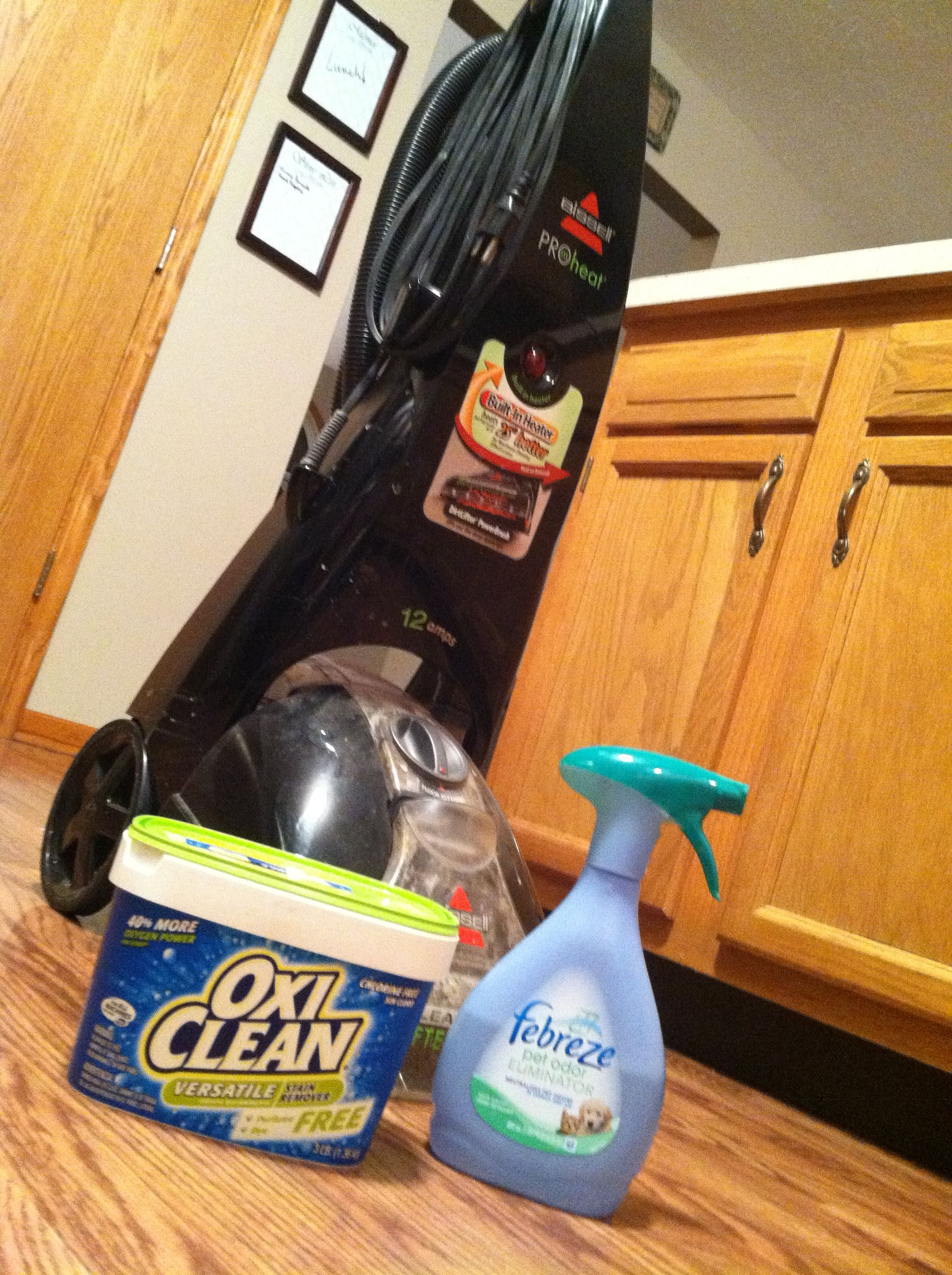 Seriously The Best Carpet Cleaning Solution Ever 1 Cup