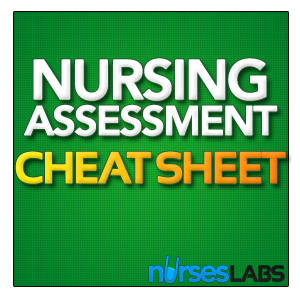 Free Cheat Sheet: Head-to-Toe Physical Assessment for Nurses