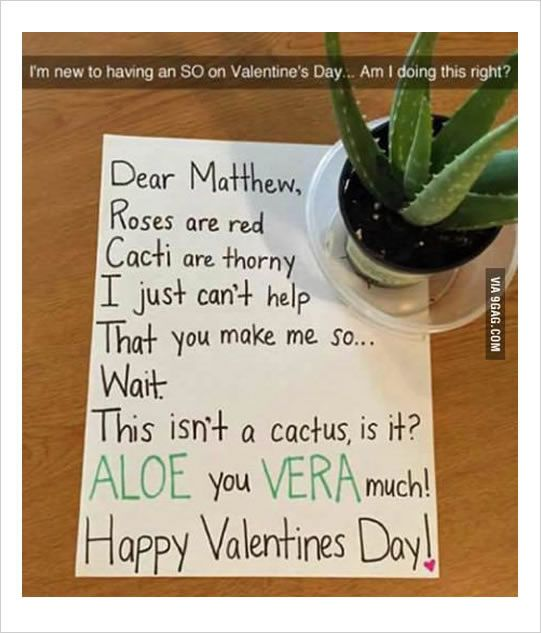1 Aloe You Vera Much Happy Velentine S Day 2 As If Being Deployed Diy Valentines Gifts For Him Valentines Gifts For Boyfriend Thoughtful Gifts For Boyfriend