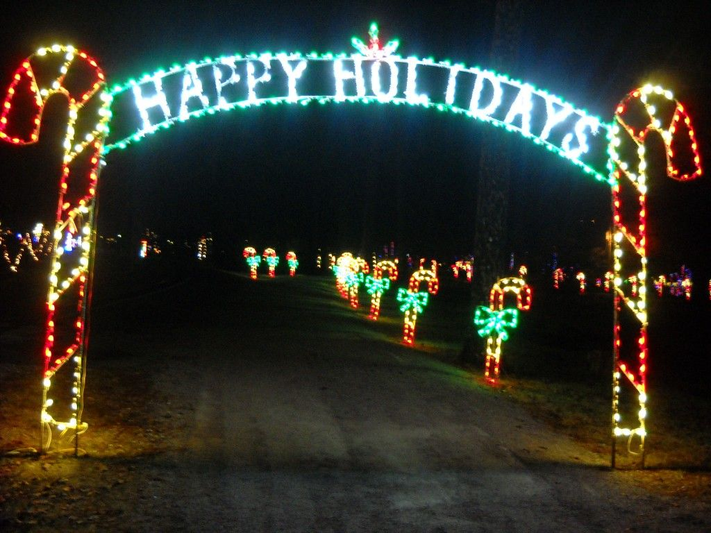 Noccalula Falls Christmas lights. | Weekend Events Stuff | Pinterest ...
