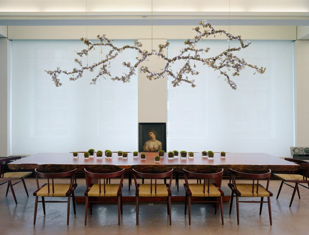 Image Of Large Branch Chandelier Dining Room Contemporary