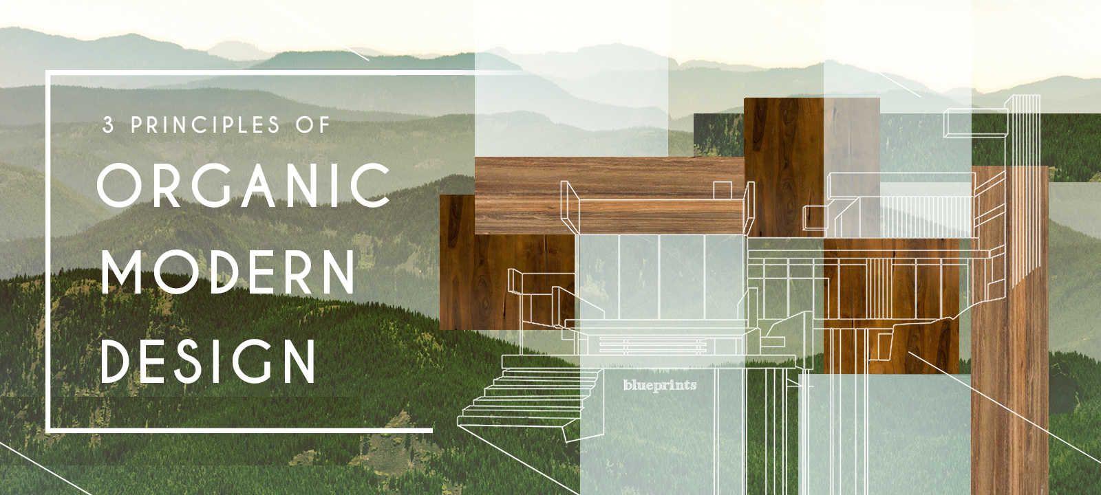 Organic Modern Furniture 3 Principles Of Organic Modern Design Furniture Collection Dot