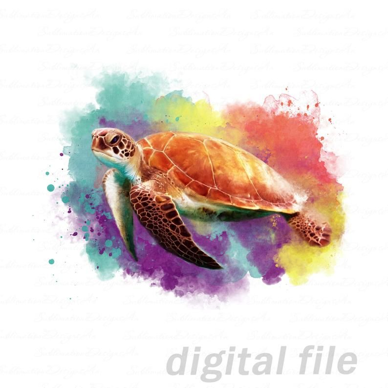 Sea Turtle Png Sublimation Designs Downloads Ocean Life Art Etsy In 2021