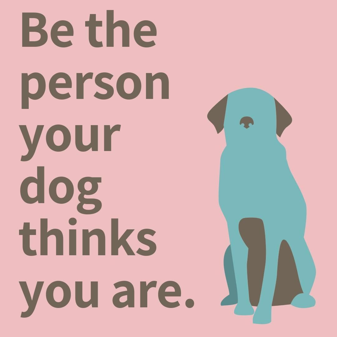 Remember Your Dog Thinks You Re The Best Thing Since Gravy Bones